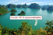 circuits personnalisables
