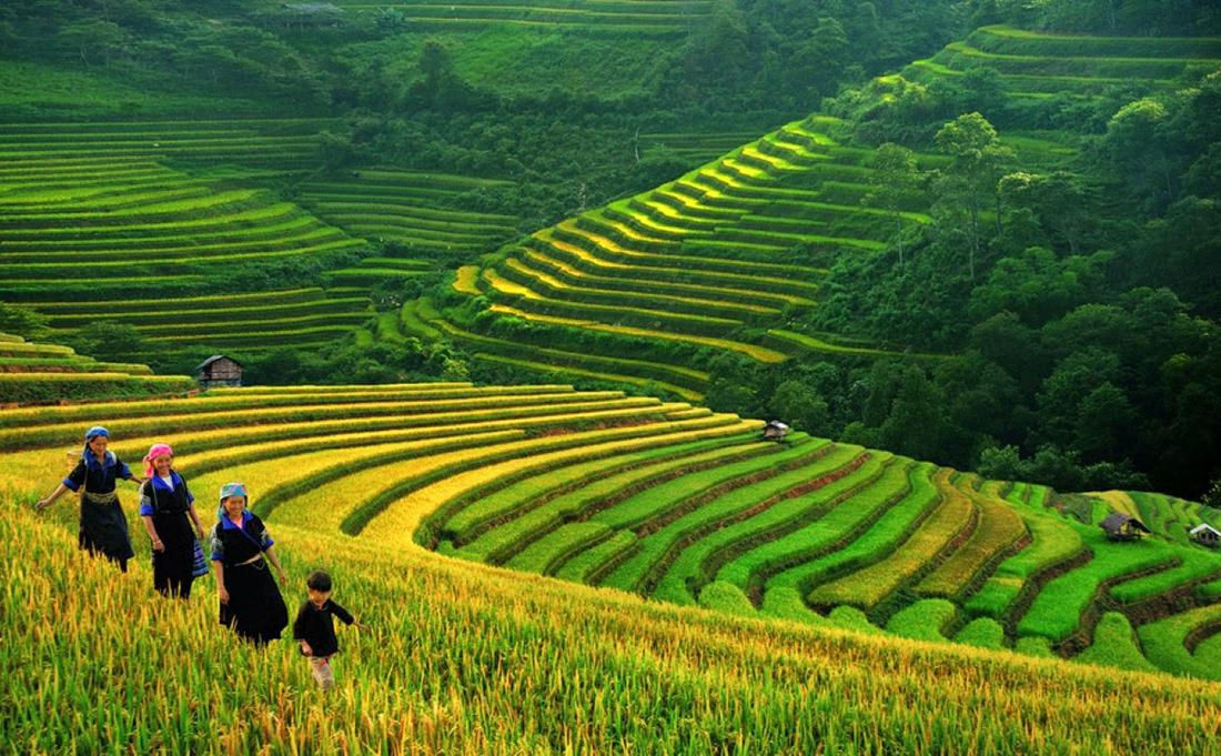 Les chutes de Ban Gioc Nord Vietnam